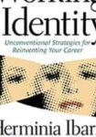 Working Identity Book Cover